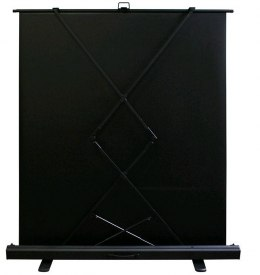 Ekran Elite Screens przenośny Seria ezCinema Plus 2 F107XWH2
